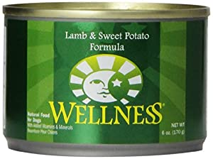 Wellness Complete Health Natural Wet Canned Dog Food, Lamb and Sweet Potato Recipe, 6-Ounce Can (Pack of 24)
