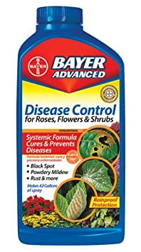 Bayer Disease Control for Roses & Flowers