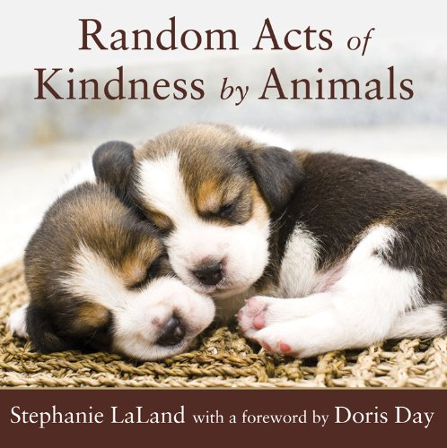 Random-Acts-of-Kindness-by-Animals