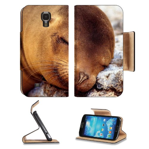 Seal Fur Seal Dream Baby Samsung Galaxy S4 Flip Cover Case With Card Holder Customized Made To Order Support Ready Premium Deluxe Pu Leather 5 Inch (140Mm) X 3 1/4 Inch (80Mm) X 9/16 Inch (14Mm) Liil S Iv S 4 Professional Cases Accessories Open Camera Hea