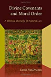 Divine Covenants and Moral Order: A Biblical Theology of Natural Law (Emory University Studies in Law and Religion)