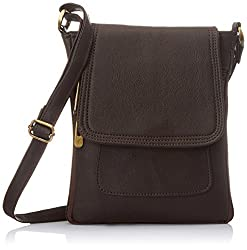 Alessia74 Womens Sling Bags (Brown) (PBG249G)