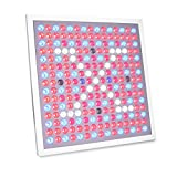 45W LED Grow Light, Growstar 225 LED Grow Light Panel Series full spectrum for Hydroponic Aquatic Indoor Plants