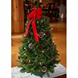 Worcester Christmas Wreath Classic Large Pre-Lit Tabletop Christmas Tree