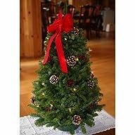 Worcester Christmas Wreath Classic La…