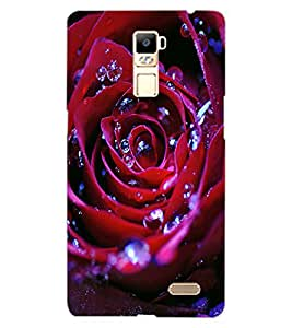ColourCraft Beautiful Rose Design Back Case Cover for OPPO R7