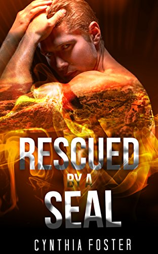 MILITARY ROMANCE: Rescued By A Seal (An Alpha Male Bady Boy Navy SEAL Contemporary Mystery Romance Collection) (Romance Collection Mix: Multiple Genres) (Gay Navy Seal compare prices)