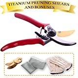 Titanium Pruning Shears Clippers Set by Garden Loves - Includes Scissors Tool, Leather Gloves and Gardening Bag w/ 2 Bonus Blades