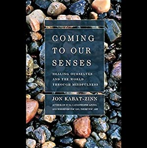 coming to our senses jon kabat zinn pdf