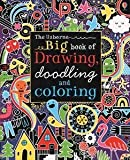 img - for Big Book of Drawing, Doodling and Coloring (Doodle Books (Usborne Books)) by MacLaine, James (2014) Paperback book / textbook / text book