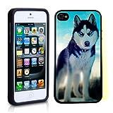 iPhone 5 5S Case ThinShell TPU Case Protective iPhone 5 5S Case Shawnex Siberian Husky Photo Art