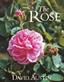 Amazon / Brand: Antique Collectors Club Dist: The Rose (David Austin)