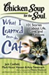 Chicken Soup for the Soul: What I Lea...