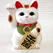 招き猫 白小判 8号右手 開運