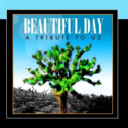 Joshua Tree - Beautiful Day - A Tribute To U2