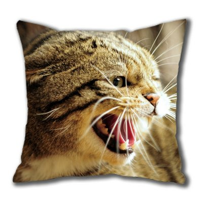 European Wild Cat Face Cotton Square Pillow Case By Sakuraelieechyan front-1021798