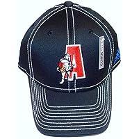 NBA D-League Springfield Armor Flex Adidas Hat - L/XL - TV77Z