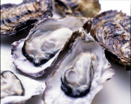 【広島湾似島直送】 広島産生かき むき身の牡蠣500g×2【生食用】 堀口海産