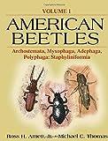 img - for American Beetles, Volume I: Archostemata, Myxophaga, Adephaga, Polyphaga: Staphyliniformia book / textbook / text book