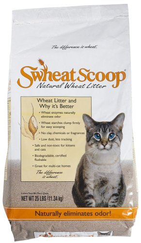 Swheat Scoop Natural Cat Litter, 25 Pound Bag image