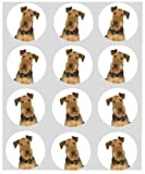 12 Dog Airedale terrier rice paper fairy cup cake 40mm toppers pre cut decoration