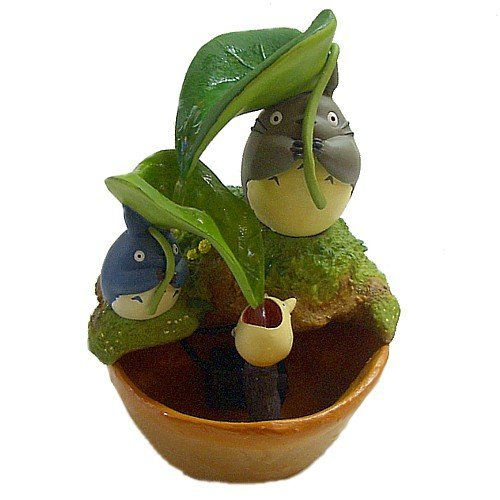 Umbrella of Totoro Water Garden / large, medium and small leaves next