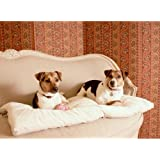 Pet Dreams Plush Sleep Ezz Pet Dog Crate Sleeper Pad Rest Kennel Carrier Mat - Small / Dusty Pink
