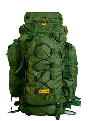 Rexler Polyester Green Unisex Rucksack Bagpack
