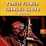 Forest Flower Soundtrack