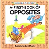 A First Book of Oppositesby David Anstey