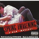 Spring Awakening: A New Musical