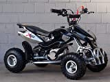 #3: Mini Quad ATV Kinderquad 49 cc Powerquad 49ccm 2010 NEU