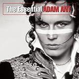 cover of The Essential Adam Ant