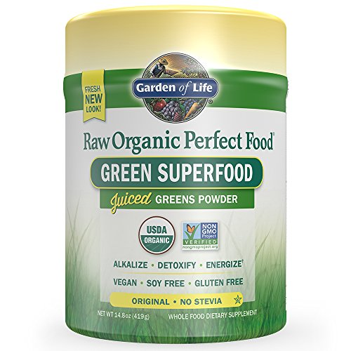 Garden of Life Raw Organic Perfect Food Original 14.8oz (419g) Powder (Perfect Food Raw compare prices)
