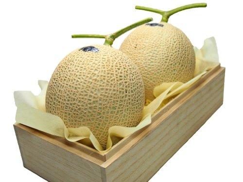 prfektur-shizuoka-melon-crown-melone-zwei-grad-berg-26-km-oder-mehr-luxus-kiribakoiri