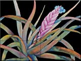Bromeliad IV by Linda Lord Tile Mural for Kitchen Backsplash Bathroom Wall Tile Mural