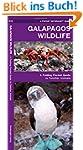 Galapagos Wildlife: A Folding Pocket...