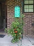 Felknor Ventures, 82.506 al revés tomate Jardinera