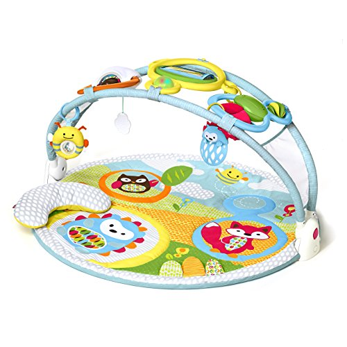 Skip Hop Explore and More Activity Gym