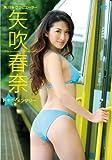 角川☆グラビエーター 矢吹春奈ドキッ!メンタリー ~ハルナのグラビア鉄道の旅~ [DVD]