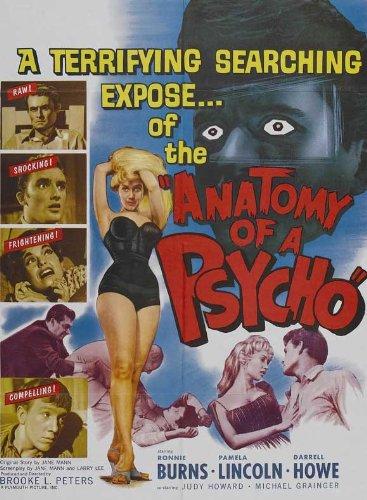 Anatomy Of A Murder Movie Poster
