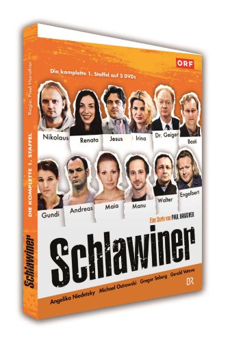 Schlawiner: Die komplette 1. Staffel [3 DVDs]