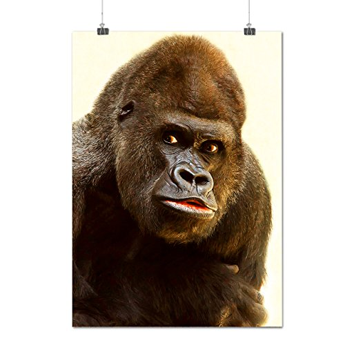 Farfelu Gorille Visage Drôle Matte/Glacé Affiche A0 (119cm x 84cm)   Wellcoda