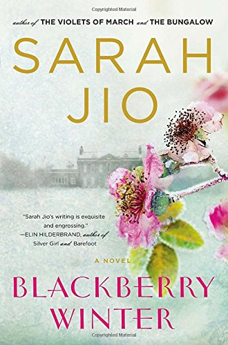 Image of Blackberry Winter: A Novel