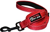 """Dog Leash - Extra Heavy Duty - Thick 3mm Nylon - 6ft Long - Premium Quality - 1"""" Wide - Reflective - Padded Handle - Made for Large, Medium or Strong Small Dogs - Lightweight - RED"""
