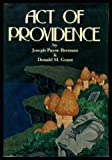 img - for Act of Providence book / textbook / text book