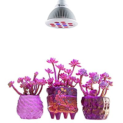 Virgin Borneo Full Spectrum True Watt 18W Hydroponic Small Plant LED Grow Light Veg/Bloom