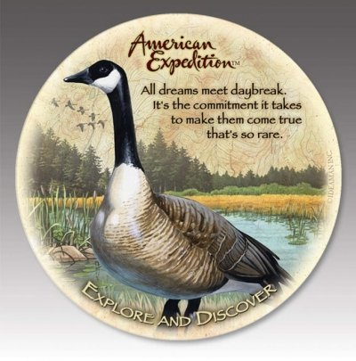 American Expedition CTST-145 Stone Coaster - Canada Goose -Set Of 4