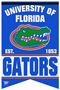 Buy NCAA Florida Gators 17-by-26 Inch Premium Felt Banner by WinCraft