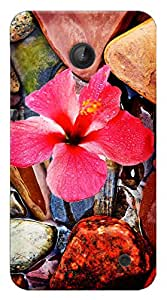 TrilMil Printed Designer Mobile Case Back Cover For Nokia Lumia 630